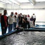 """""""STEM za sve"""" Studijski posjet Institutu za oceanografiju i ribarstvo"""